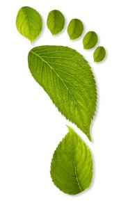 reduce carbon footprint - reduce pollutants